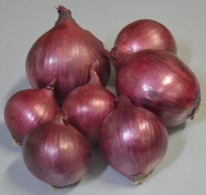rode ui red onion rote zwiebel